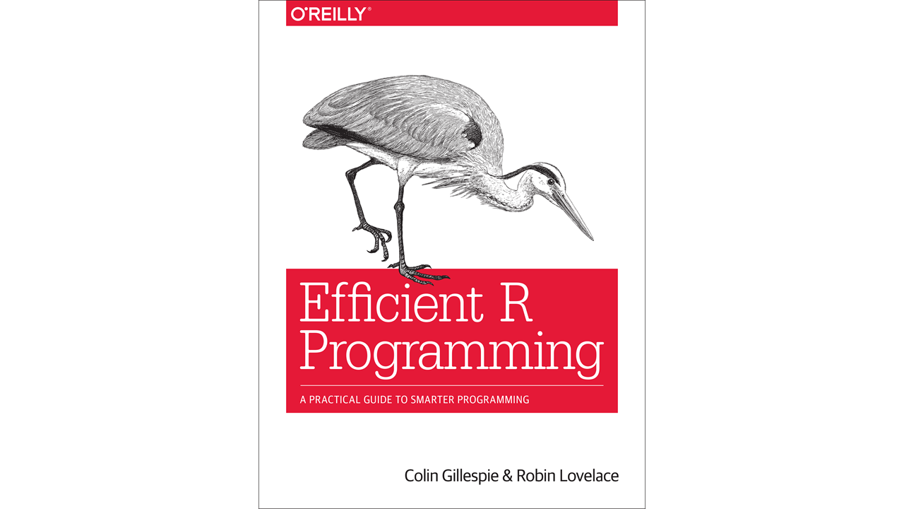 Review of Efficient R Programming
